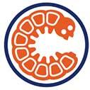 Logo coatingproducent Cocoon Holland B.V.