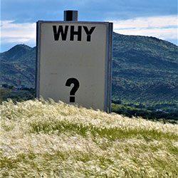 Waarom het 'waarom' zo belangrijk is